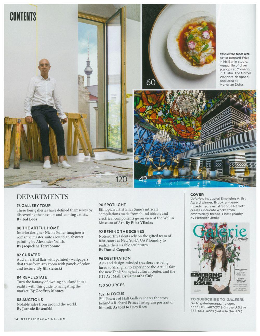 Galerie Magazine   Bernard FRIZE