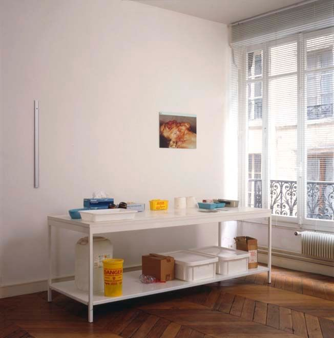 Artist:Damien HIRST, Exhibition:When Logics Die