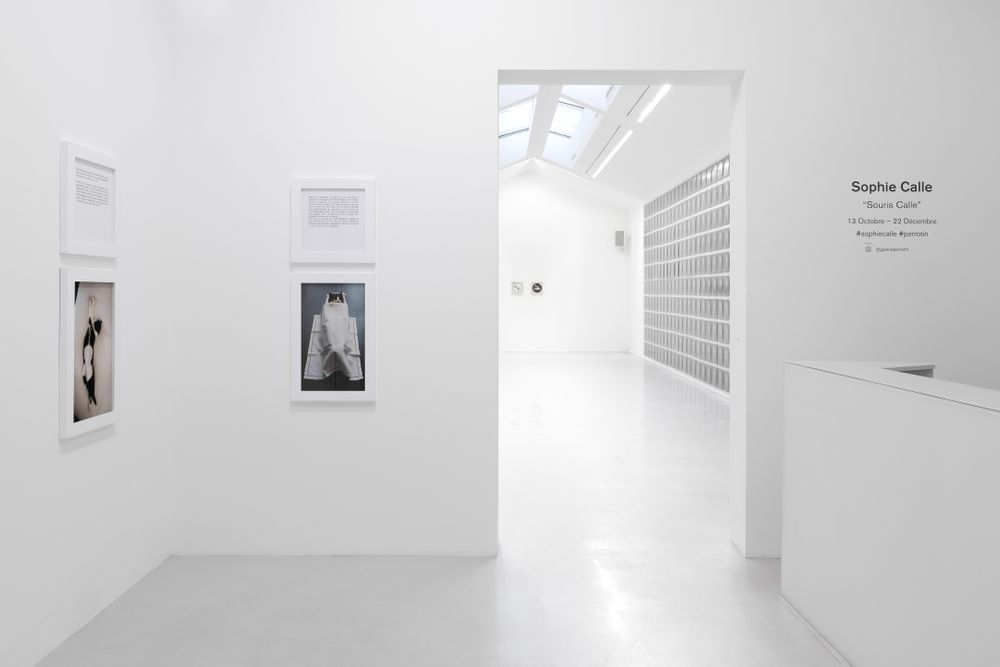Artist:Sophie CALLE, Exhibition:2 projects of Sophie Calle