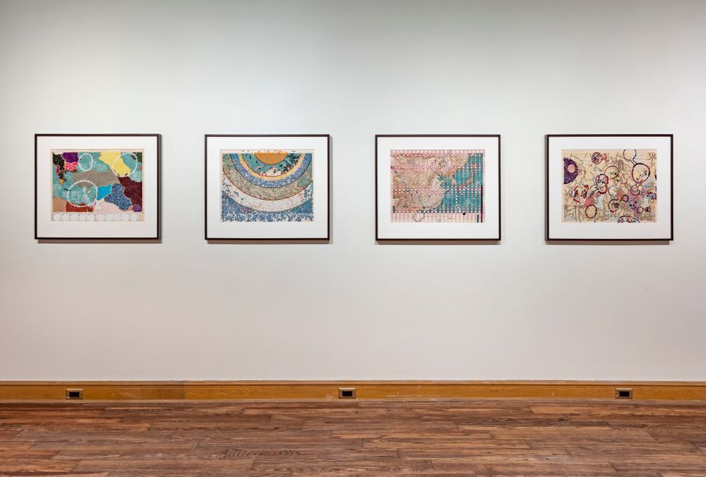 Artist:Bharti KHER, Exhibition:Vision Exchange: Perspectives from India to Canada
