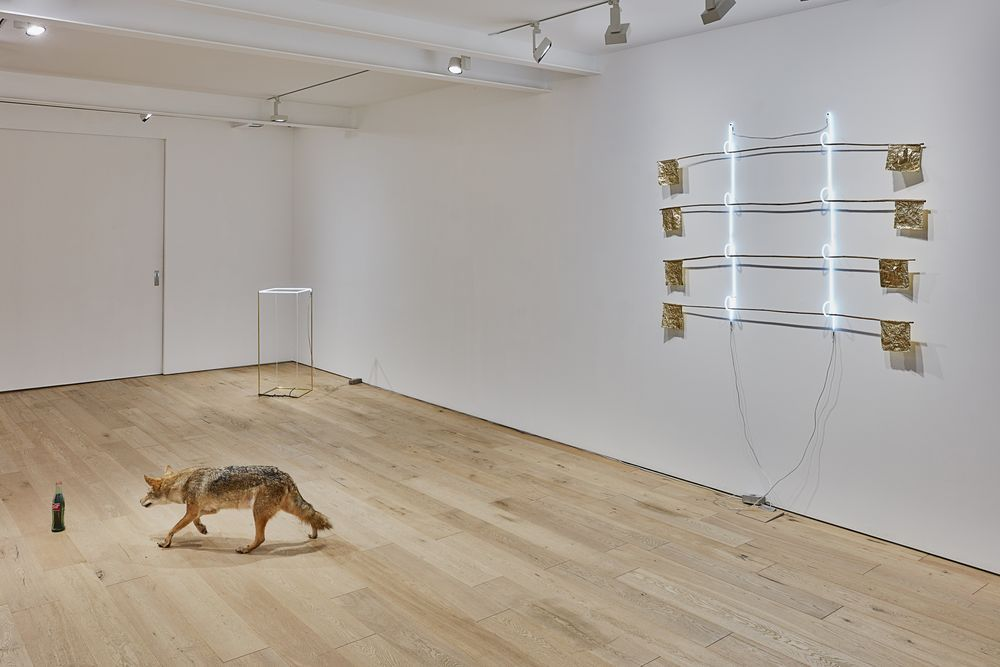 Artist:Gabriel RICO, Exhibition:The Stone, The Branch, and The Golden Geometry