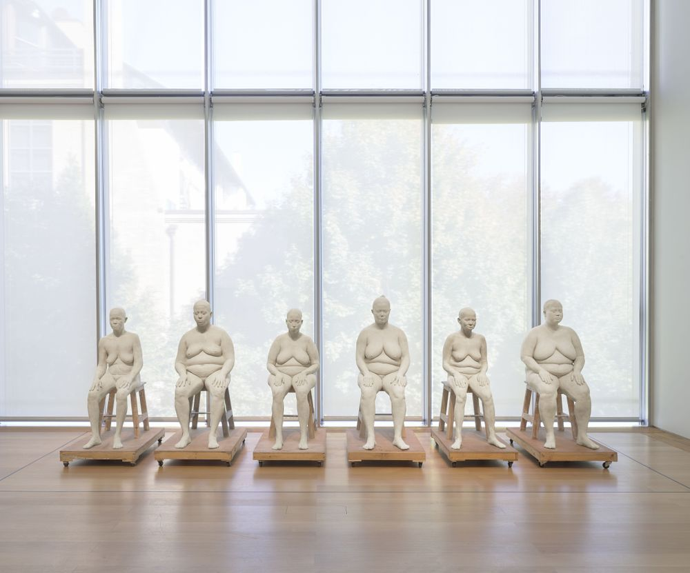 Artist:Bharti KHER, Exhibition:In the Company of Artists, 25 Years of Artists-In-Residence