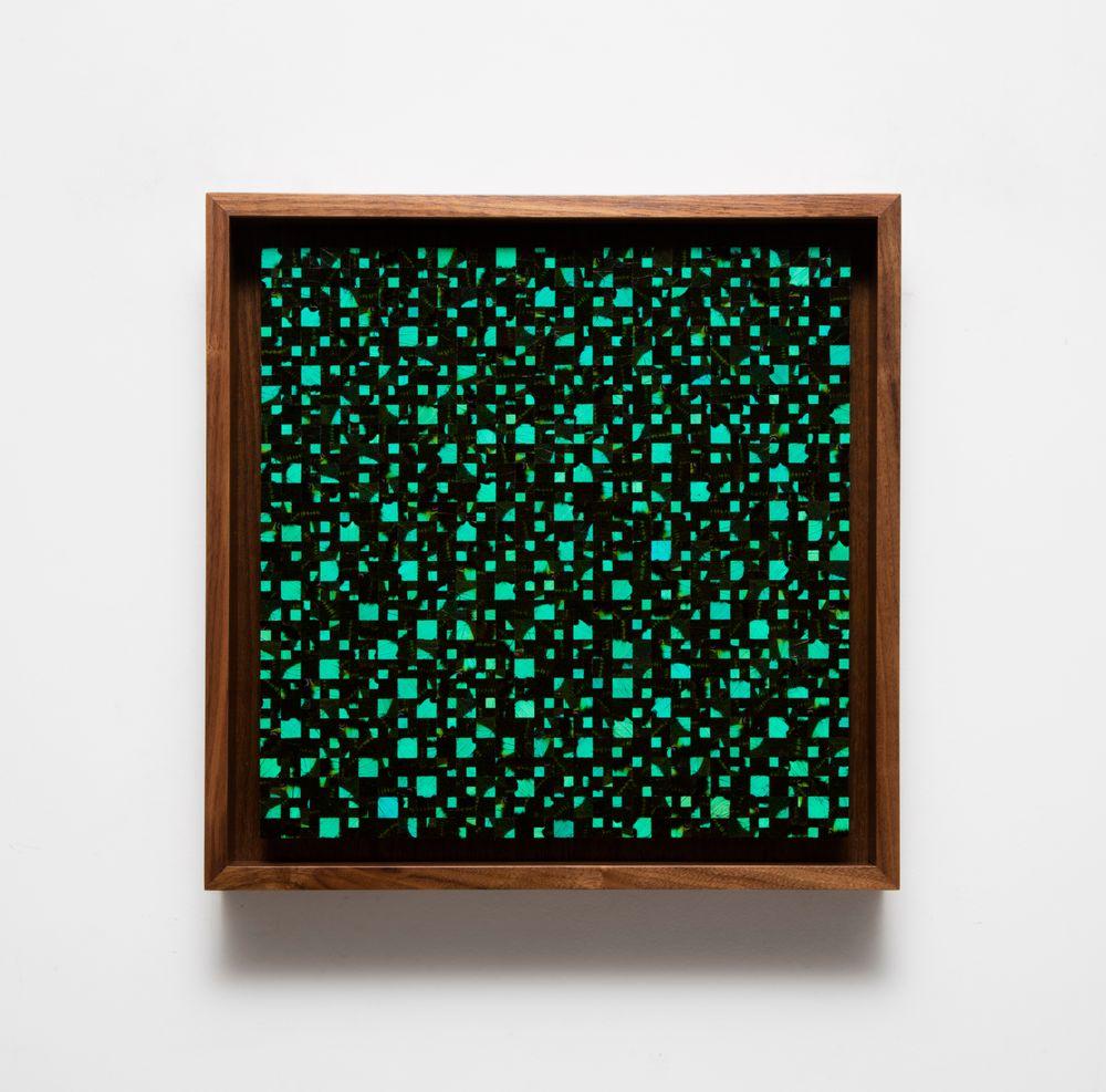 Artist:Gabriel DE LA MORA, Exhibition:LEPIDOPTERA