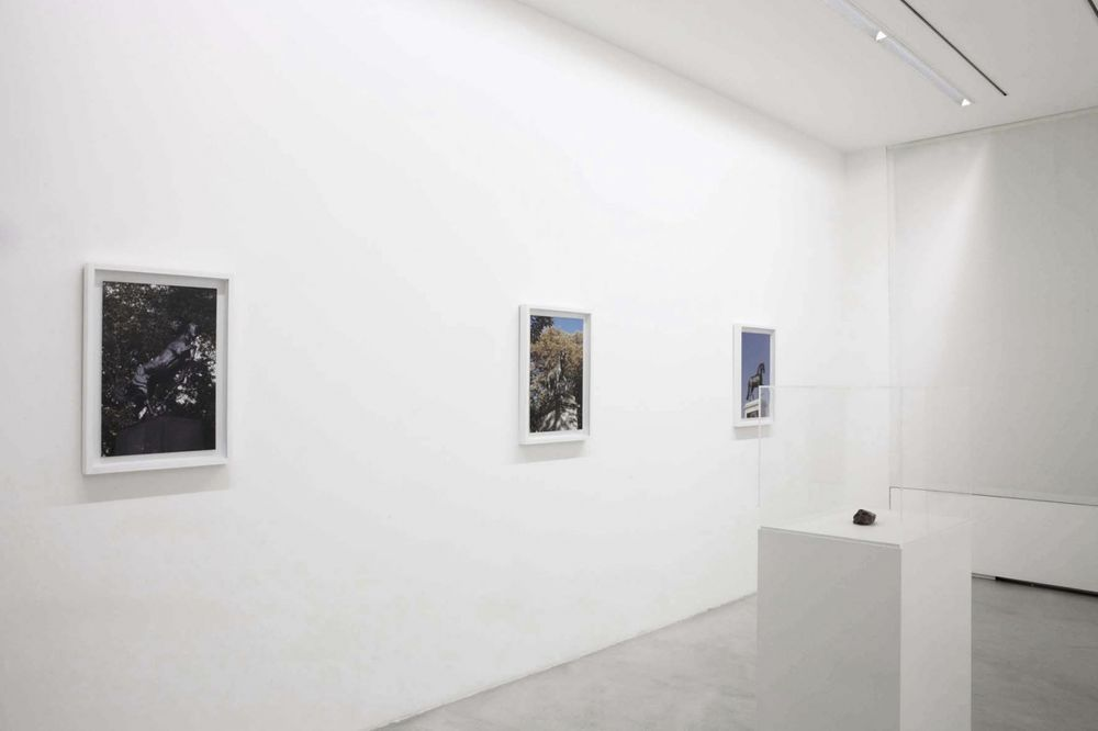 Artist:Iván ARGOTE, Exhibition:Caliente