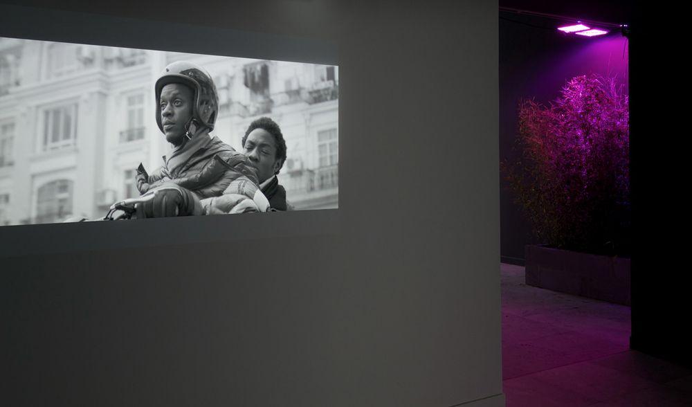 Artist:Jesper JUST, Exhibition:Intercourses - Danish Pavilion