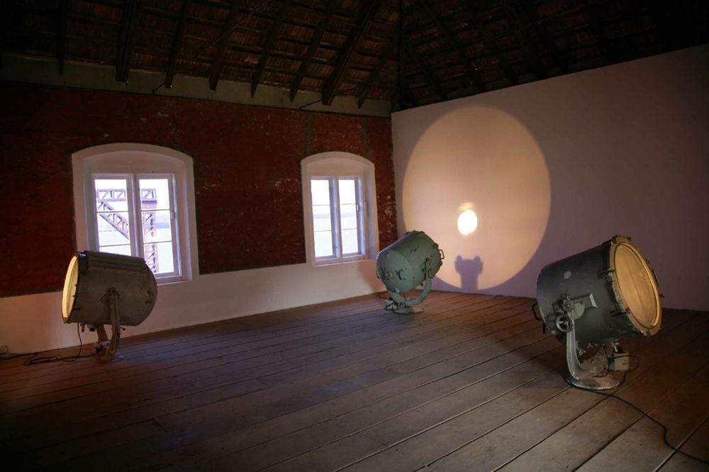 Artist:Bharti KHER, Exhibition:Whorled Explorations