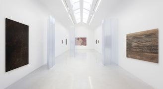VIRTUAL VISIT OF PIETER VERMEERSCH'S EXHIBITION AT PERROTIN PARIS