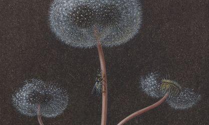 Artist:Laurent GRASSO, Exhibition: Future Herbarium