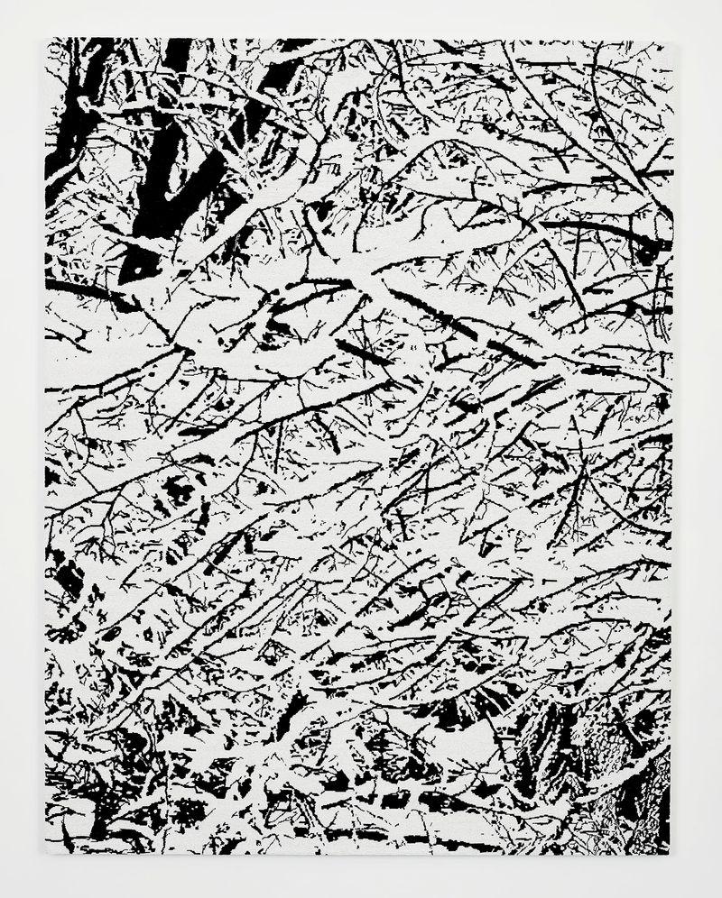 Farhad_Moshiri_SNOW FOREST 004A