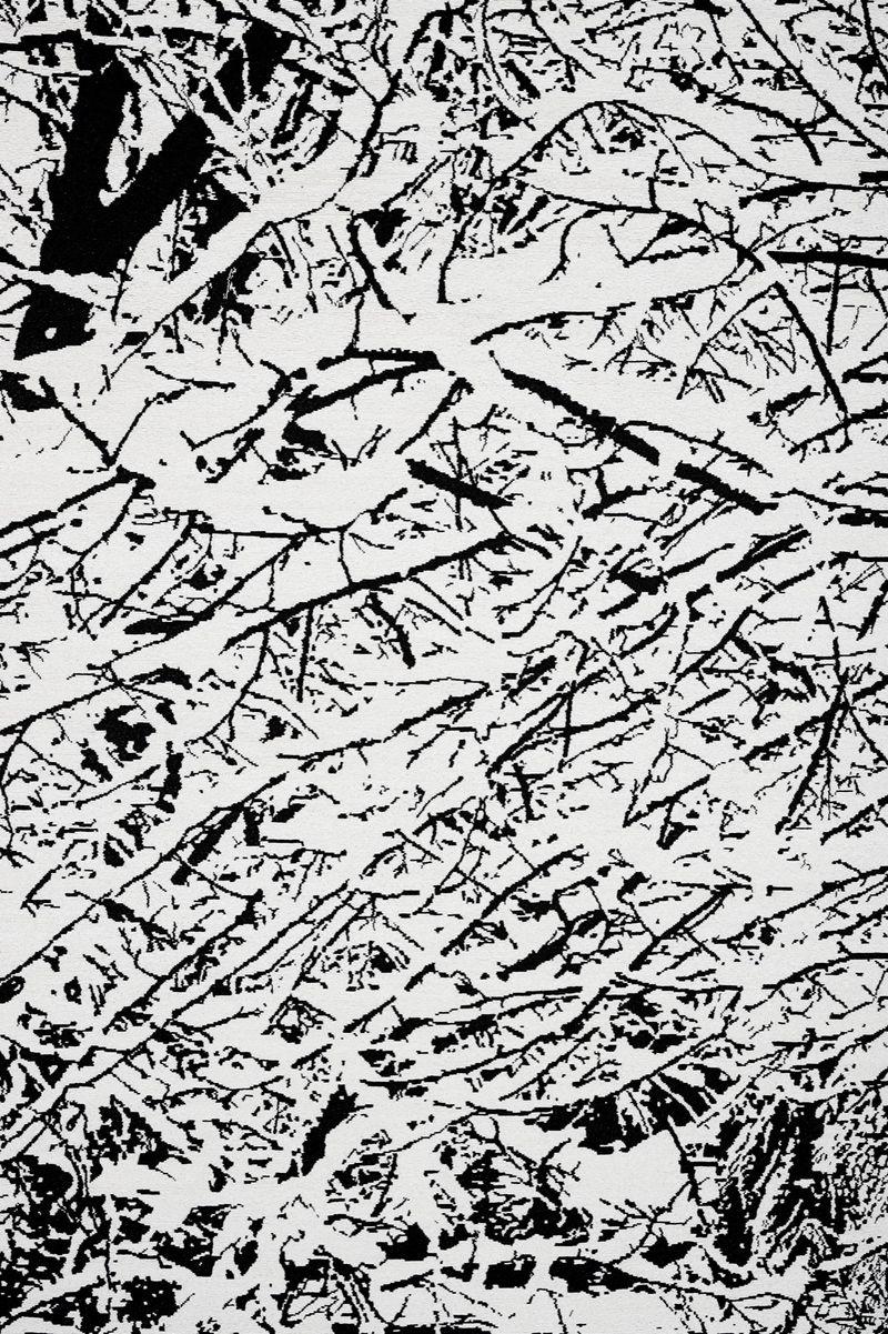 Farhad_Moshiri_SNOW FOREST 004A_farhad-moshiri-38332_47025