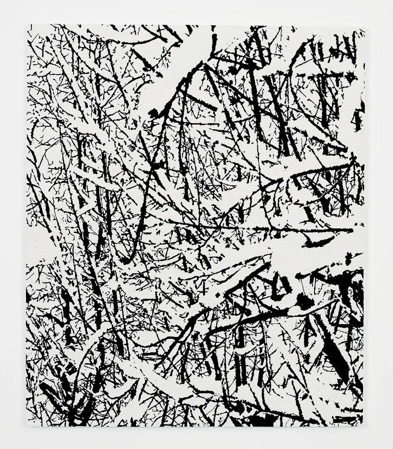 Farhad_Moshiri_SNOW FOREST 007A