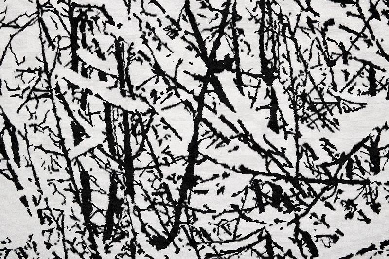 Farhad_Moshiri_SNOW FOREST 007A_farhad-moshiri-38335_47017