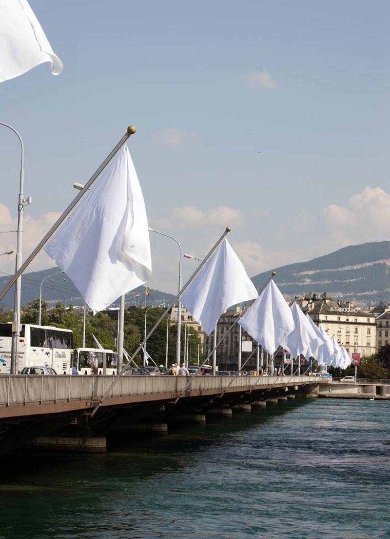 Gianni_Motti_Hedge Flag