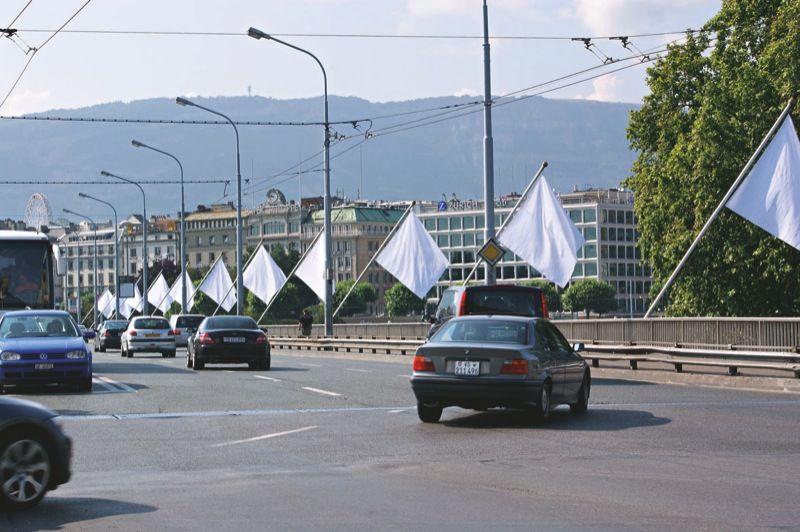 Gianni_Motti_Hedge Flag_gianni-motti-25392_19122