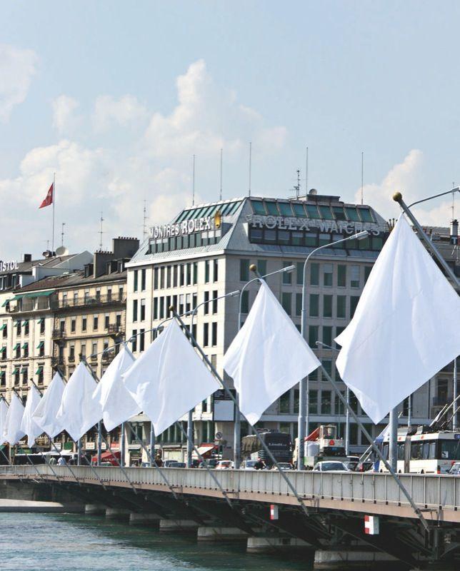Gianni_Motti_Hedge Flag_gianni-motti-25392_19123