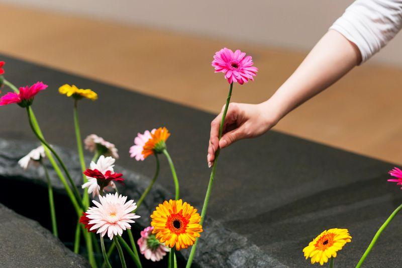 lee_mingwei_The Moving Garden_lee_mingwei-48704_98406