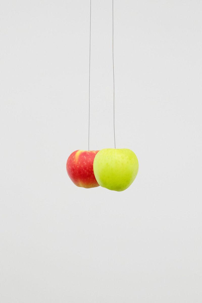 Michael_Sailstorfer_Zwei Äpfel (--)_michael_sailstorfer-45550_96011