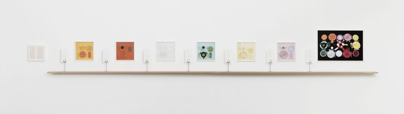 Sophie_Calle_The chromatic diet