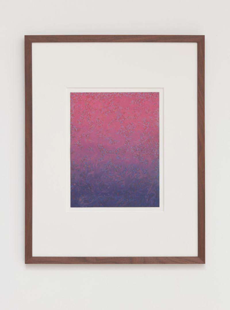 Zach_Harris_Purple Cloud