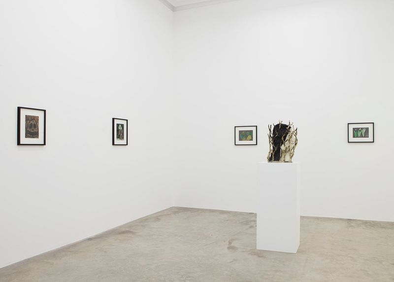 "Klara_Kristalova_View of the exhibition ""Camouflage"" at Perrotin  Paris (France), 2017_14299"