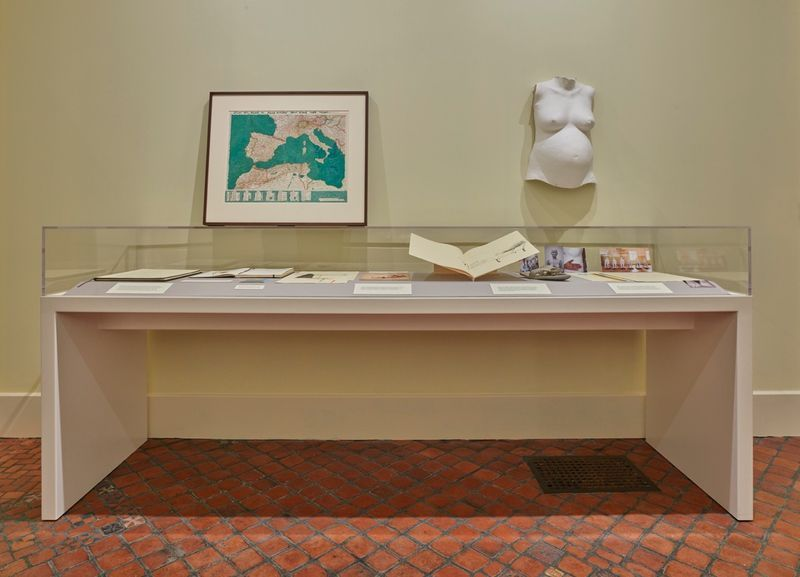 """Bharti_Kher_View of the exhibition """"Bharti Kher : Sketchbooks and Diaries"""" at Isabella Stewart Gardner Museum  BOSTON (USA), 2017_14339"""
