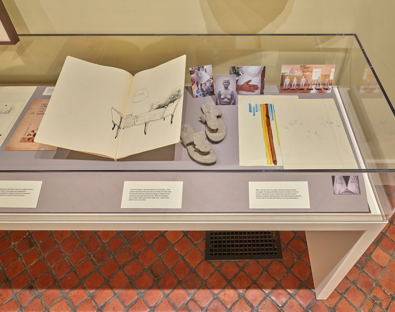"""Bharti_Kher_View of the exhibition """"Bharti Kher : Sketchbooks and Diaries"""" at Isabella Stewart Gardner Museum  BOSTON (USA), 2017_14349"""
