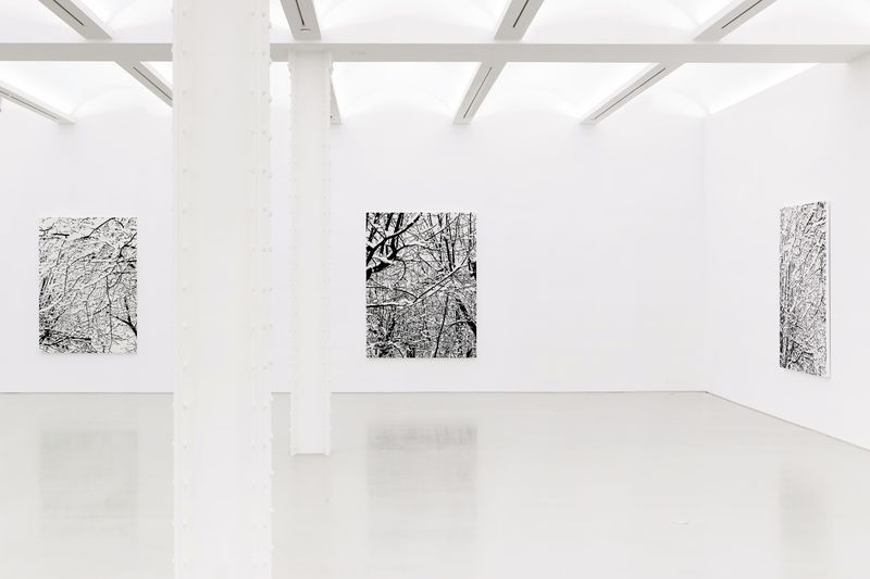 "View of the exhibition""SNOW FOREST"" at Perrotin New York, 2017"