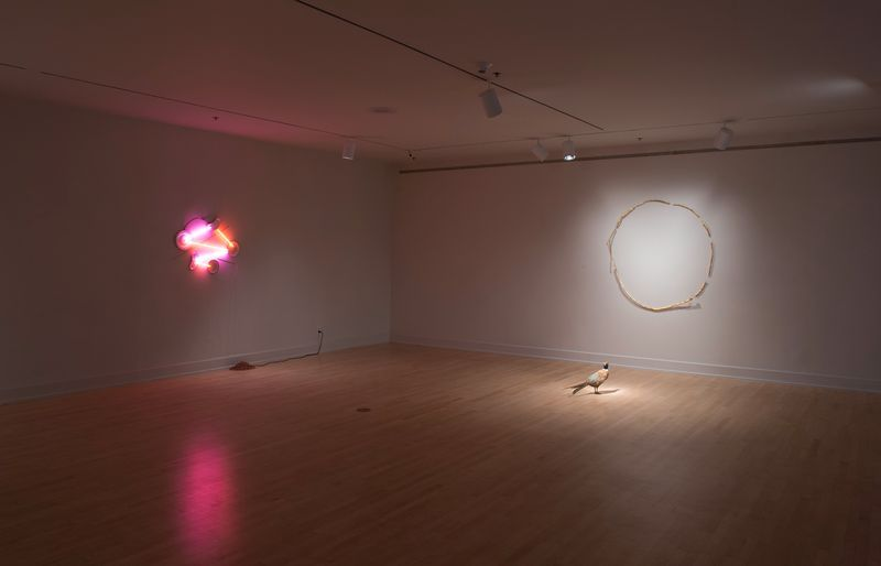 "Exhibition view of ""DEAD, DEAD, LIVE, DEAD"" at the ASU Art Museum, Phoenix, AZ, 2017"