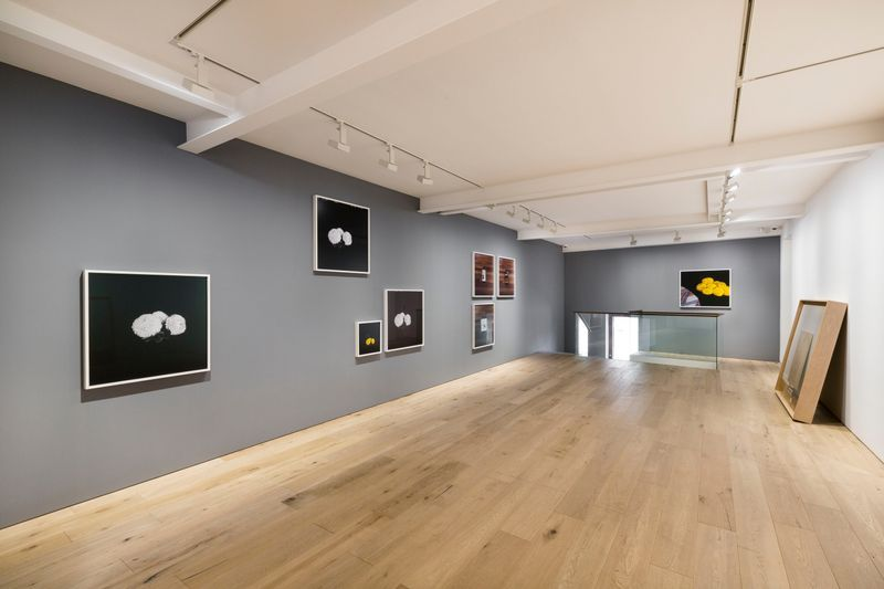 Leslie_Hewitt_View of the exhibition  at SEOUL GALLERY Seoul (South Korea), 2018_14992