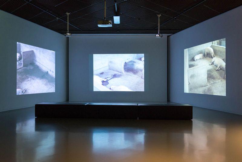 Wim_Delvoye_View of the exhibition  at Musée Royaux des Beaux-Artsde Bruxelles  BRUXELLES (Belgium)_20061