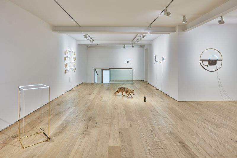 "View of the exhibition ""The Stone, The Branch, and The Golden Geometry"" at Perrotin Seoul, 2019"
