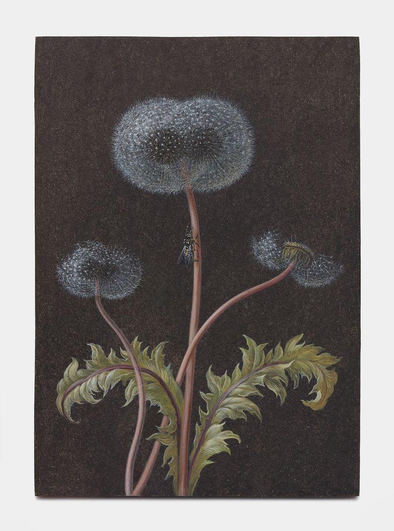 """Laurent_Grasso_View of the exhibition """"Future Herbarium"""" at HONG KONG Gallery Limited Hong Kong (Hong Kong), 2021_26232"""