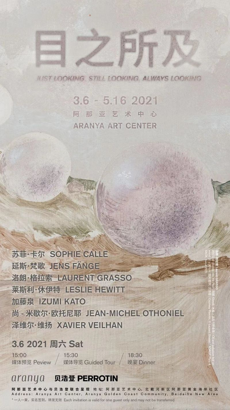 """Poster of the group exhibition """"Just looking, Still looking, Always looking""""curated by Jocelyn Xu at Aranya Art Center (China), 2021"""