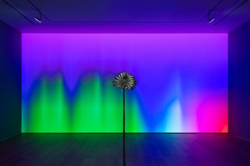 """Laurent_Grasso_View of the exhibition """"Future Herbarium"""" at HONG KONG Gallery Limited Hong Kong (Hong Kong), 2021_26876"""