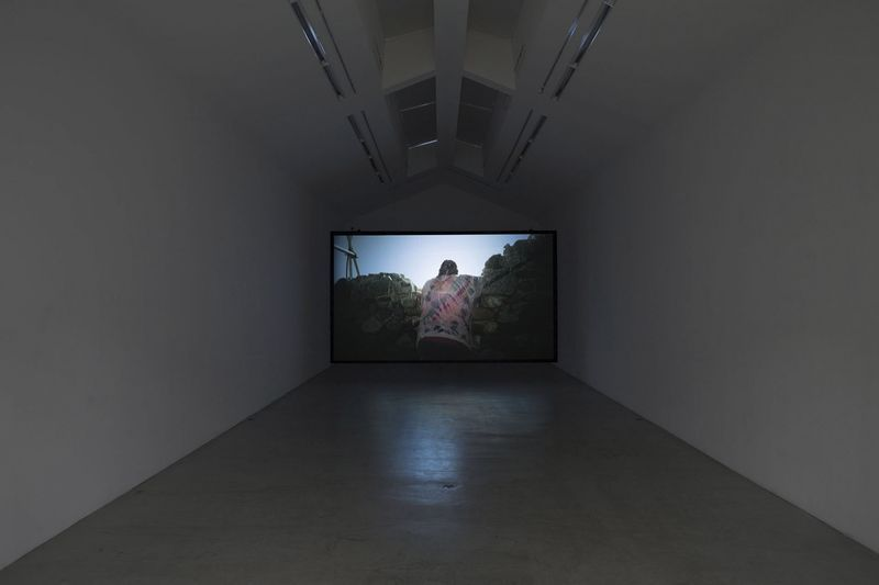 "View of the exhibition at Galerie Perrotin, Paris (France), 2013""Llano"", 2012 / Single channel blu-ray video / 07'17"""