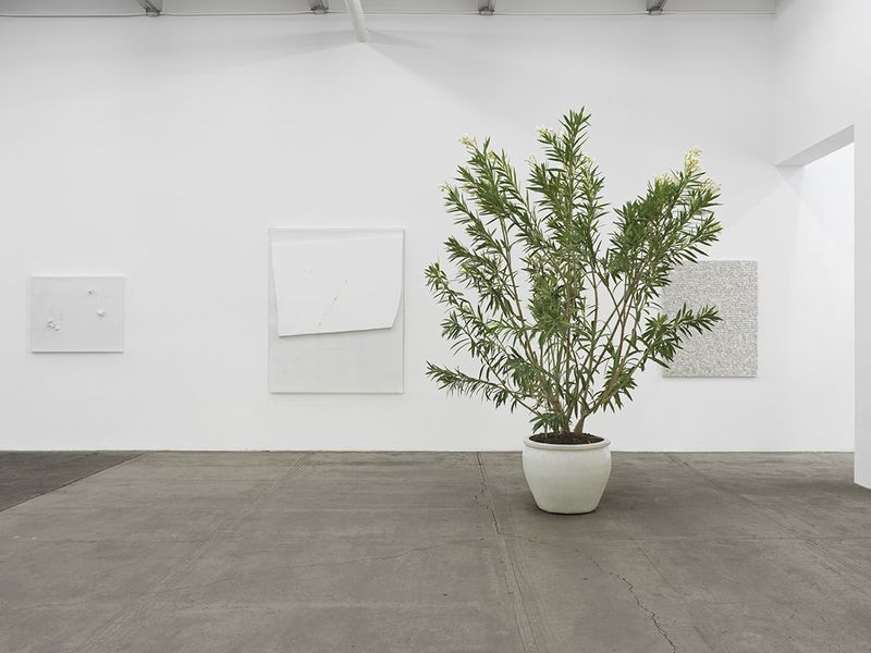 """Thilo_Heinzmann_View of the exhibition """"Thilo Heinzmann"""" at Bortolami Gallery New York (USA), 2014_7262_1"""