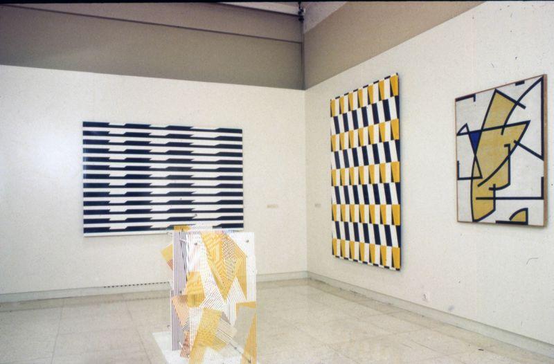 """Jesus_Rafael_Soto_View of the exhibition """"Retrospective"""" at Fundação de Serralves Porto (Portugal), 1993_7434_1"""
