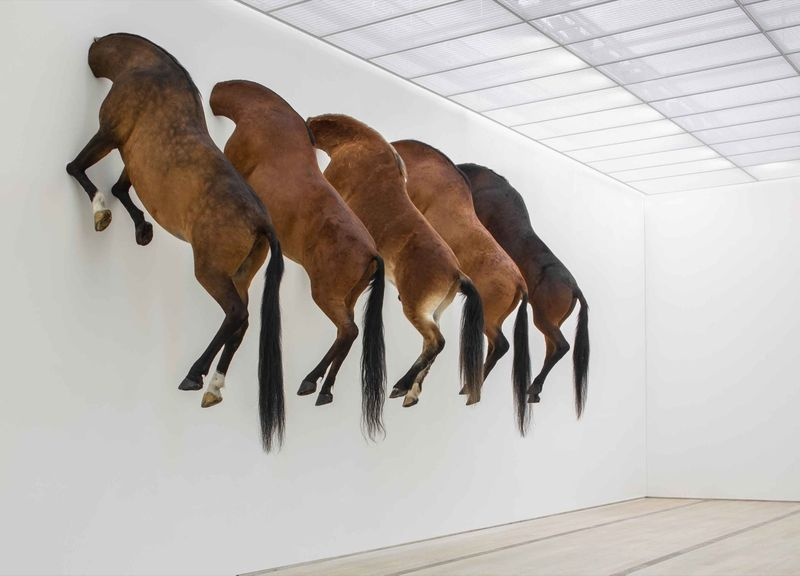 """""""Untitled"""", 2007 / Taxidermized horses"""
