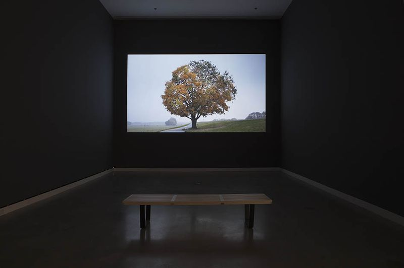 "View of the exhibition ""It Might as Well be Spring"" at Rochester Art Center, Rochester (U.S.A.), 2014-2015"" Anti-Herbst (""Anti-Autumn"")"", 2012 – 2013 / Video / 09'15"""