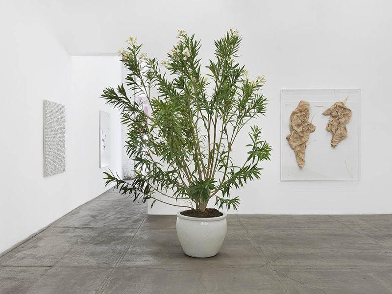 """Thilo_Heinzmann_View of the exhibition """"Thilo Heinzmann"""" at Bortolami Gallery New York (USA), 2014_exhibition_7255_1"""