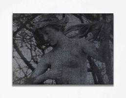 o.T. (Hermia) | Gregor HILDEBRANDT