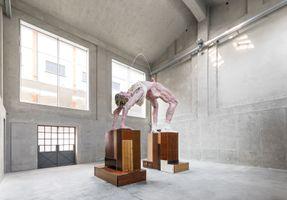 "View of the exhibition ""Slight Agitation 3/4: Gelitin"" at FONDAZIONE PRADA  Milano (Italy), 2017 | GELITIN"