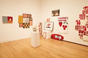 "Vue de l'exposition ""FOCUS: Barry McGee"" à The Modern Art Museum of  FORT WORTH (USA) 