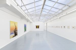 """View of the exhibition """"Speculative Objects"""" at Rodolphe Janssen Brussels (Belgium) 