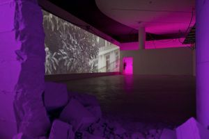 "View of the exhibition "" Jesper Just - APPEARING / INTERCOURSES "" at ARoS Aarhus (Denmark), 2014 