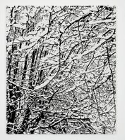 SNOW FOREST 006A | Farhad MOSHIRI