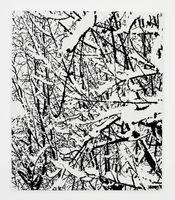 SNOW FOREST 007A | Farhad MOSHIRI