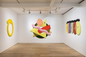 """View of the exhibition """"Two Purple Tigers"""" at Perrotin  Seoul (South Korea), 2018   Josh SPERLING"""