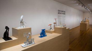 """Ants at a Picknic"" 于 The Davis Museum at Wellesley College  WELLESLEY (USA) | 艾迪·馬丁内斯"