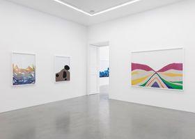 """展覽現場圖 """"Chemical Landscape"""" 于 GALERIE PERROTIN  Paris (France), 2019   萊諾·艾斯提夫"""
